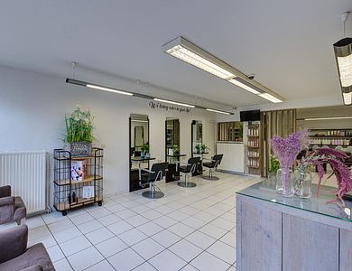 Salon - Dirk De Witte - Boom