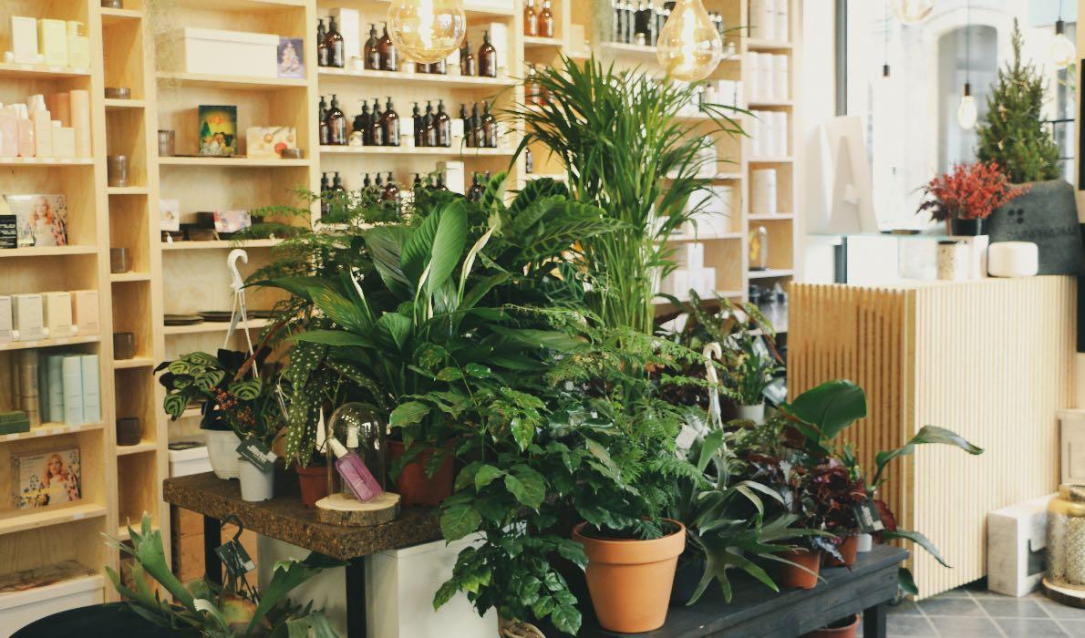 Santos Hair & Skin Clinic, Ieper | Salonkee