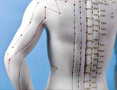 Salon - Aline Steyaert acupuncteur