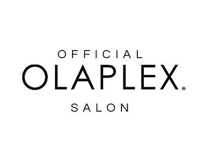 Salon - Le Salon Max and Dio